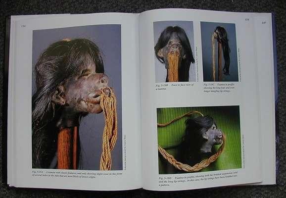 BOOK111 : Shrunken Heads - Tsantsa Trophies