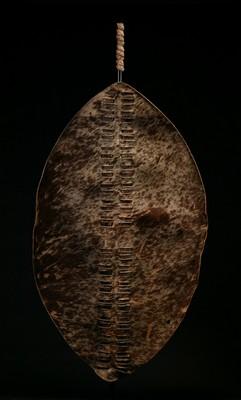 Tribal Art :: African Art :: AF524 :: Zulu War Shield :: Farrow Fine Art