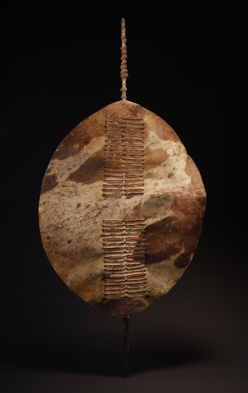 Tribal Art :: African Art :: AF580: Zulu War Shield